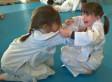animation judo à Pernes Les Fontaines